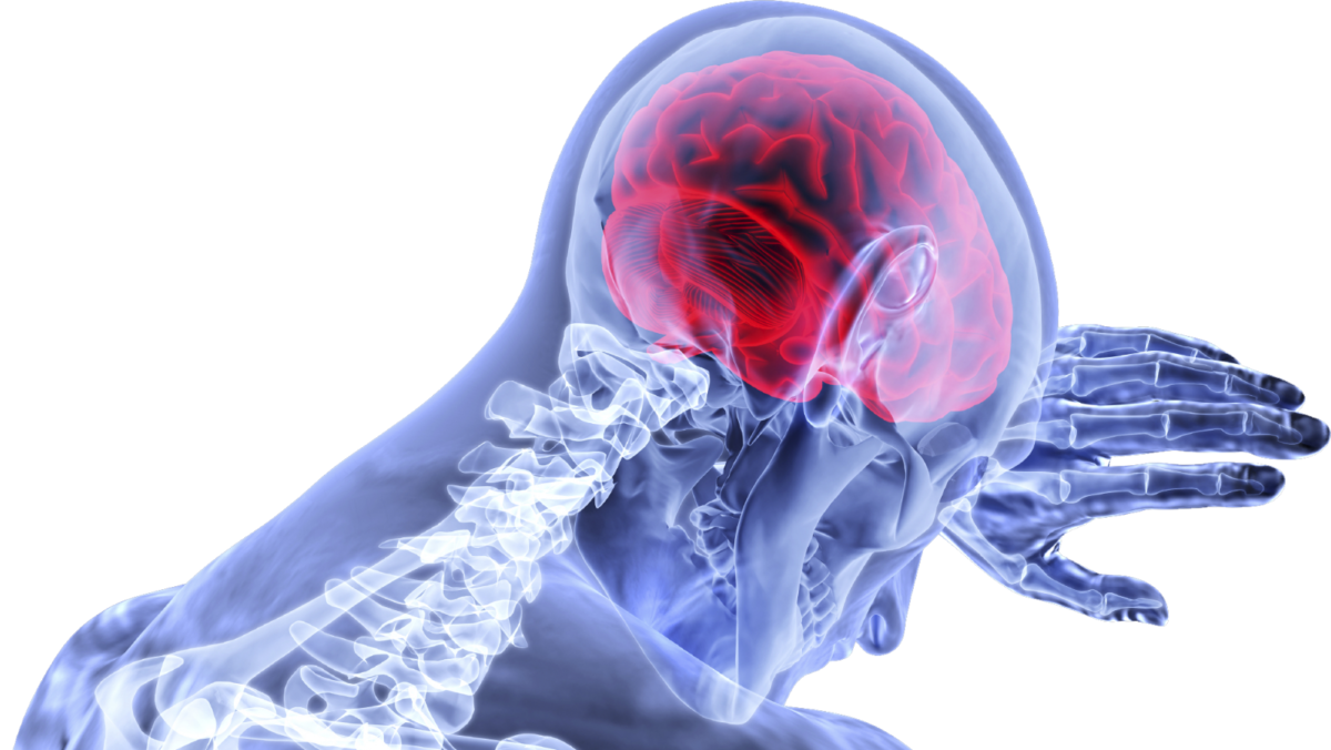 Concussion: When The Skull Just Isn't Protection Enough
